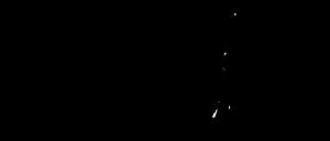 Logo Baumdienste Berlin